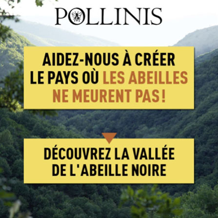 Campagne ONG Pollinis